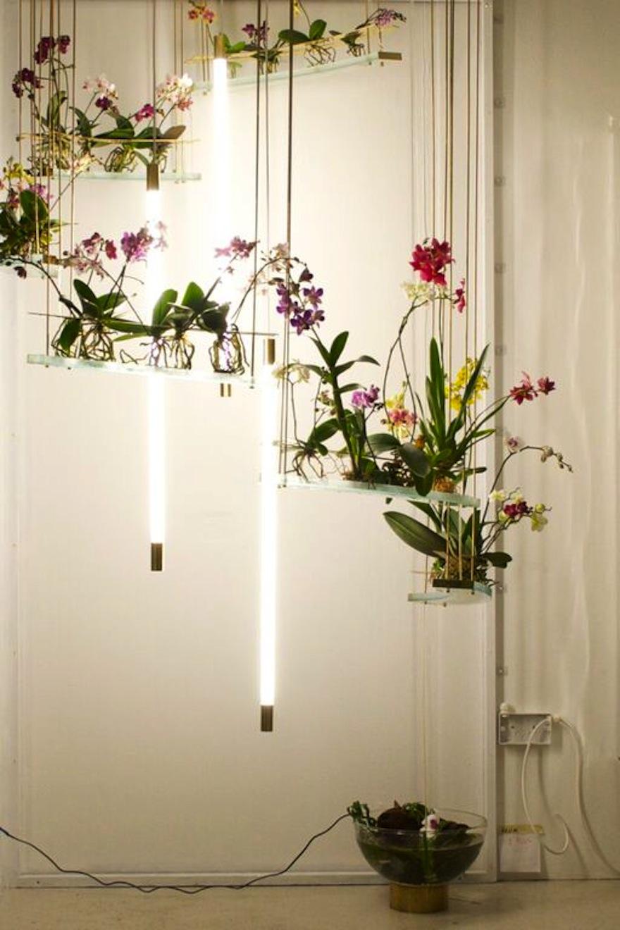 Studio ayaskan 39 s indoor ecosystem mimics the sensory for Indoor nature design