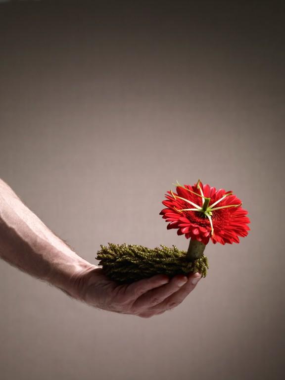 Floral fun | Design In...