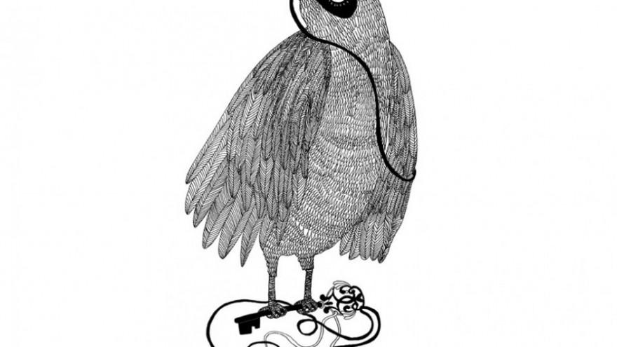 Bird by Lauren Fowler.