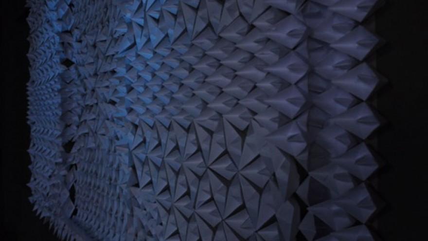 Crazy carpets design indaba for Crazy carpet designs
