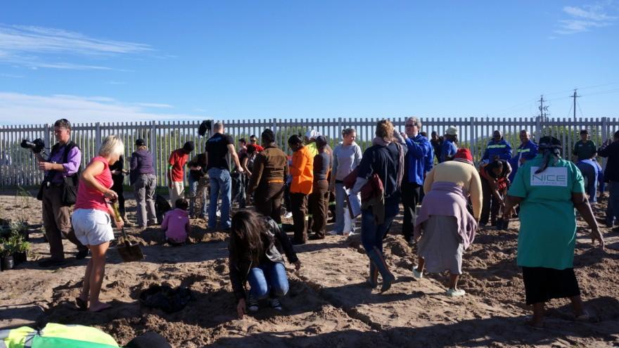 Mandela Day 2012: planting trees at Blikkiesdorp