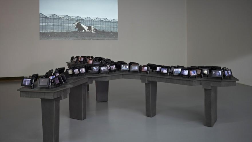 Amnesia of a Landscape by Jeanne van Heeswijk.