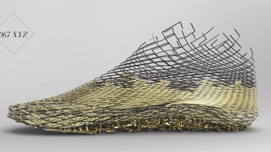 067 XYZ Shoe design by Earl Stewart: Image: Earl Stewart.