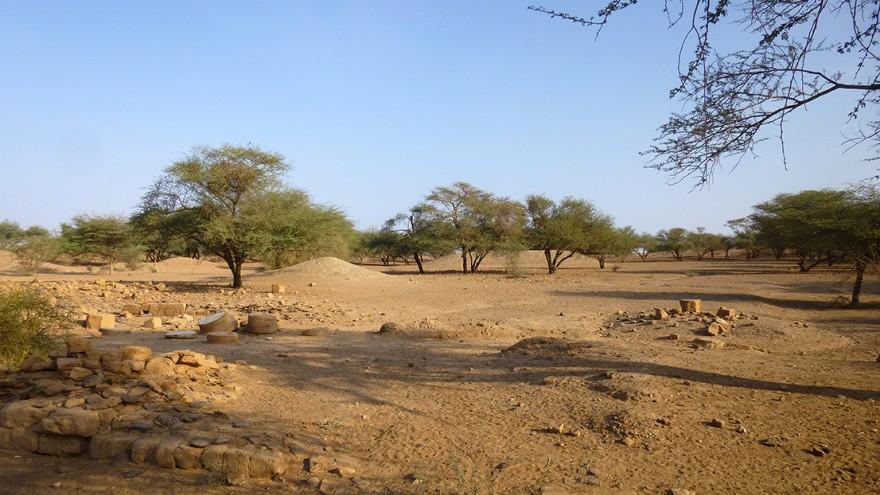 sudan - photo #32