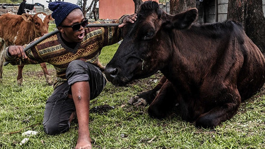 Mpongo's township portraits