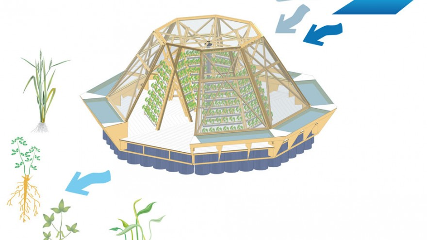Italian think tank Pnat have designed modular, floating green houses called JellyFish Barges that could help solve food security problems