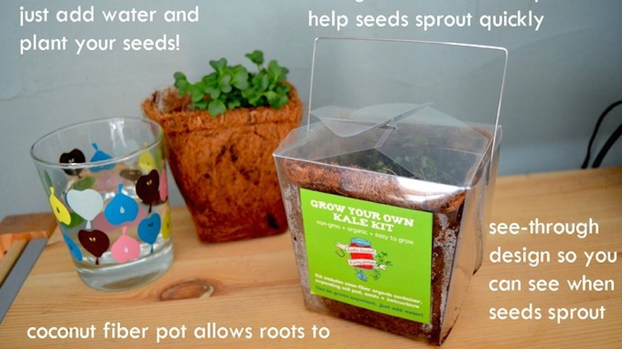 Takeout container turned mini-greenhouse makes growing food easy.