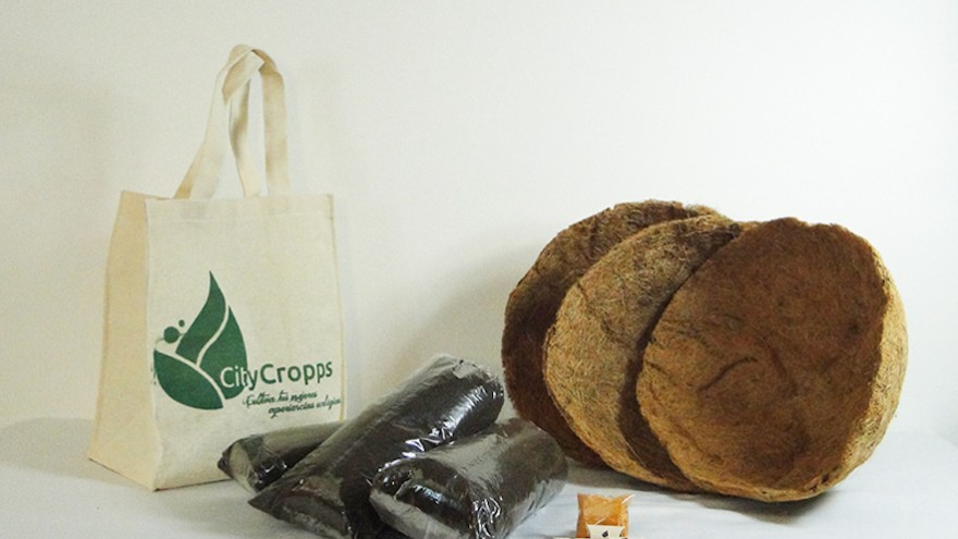 Personalised Citycropps Package