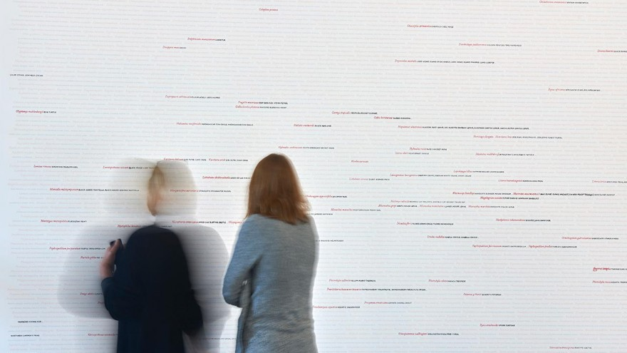 Seeing Red..Overdrawn exhibition