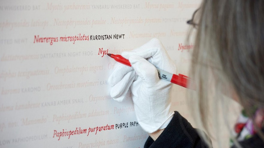 Visitors contribute to Seeing Red..Overdrawn by highlighting the names of species