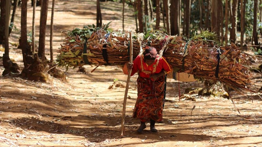 Tadesse spent a day with Kebebush, a local wood carrier