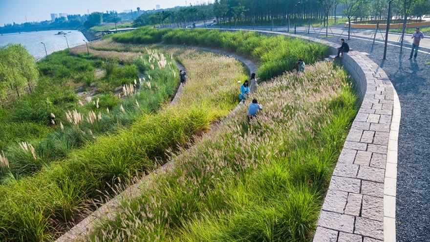 Yanweizhou embankments