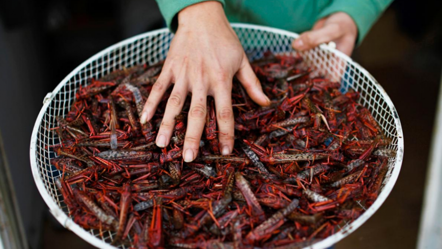 Friend locust dish