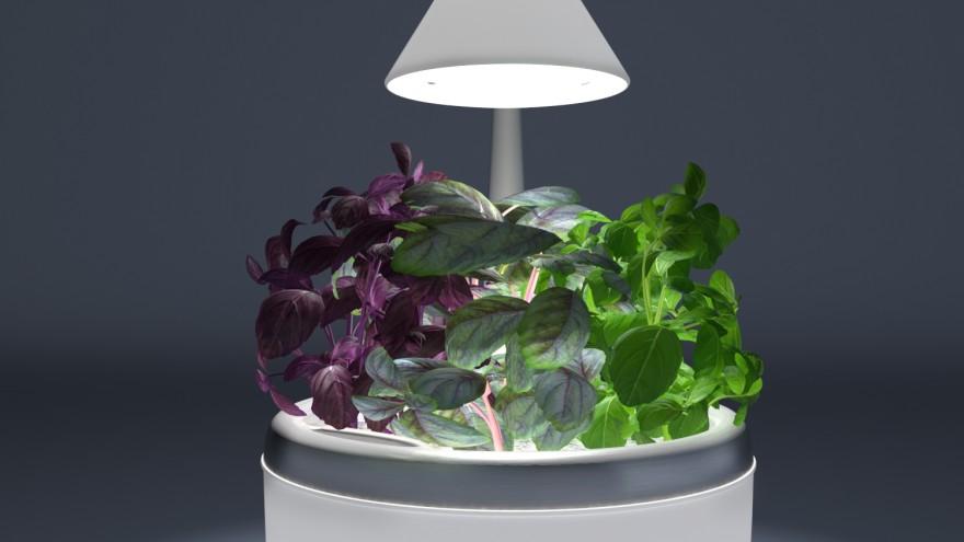 SproutsIO device