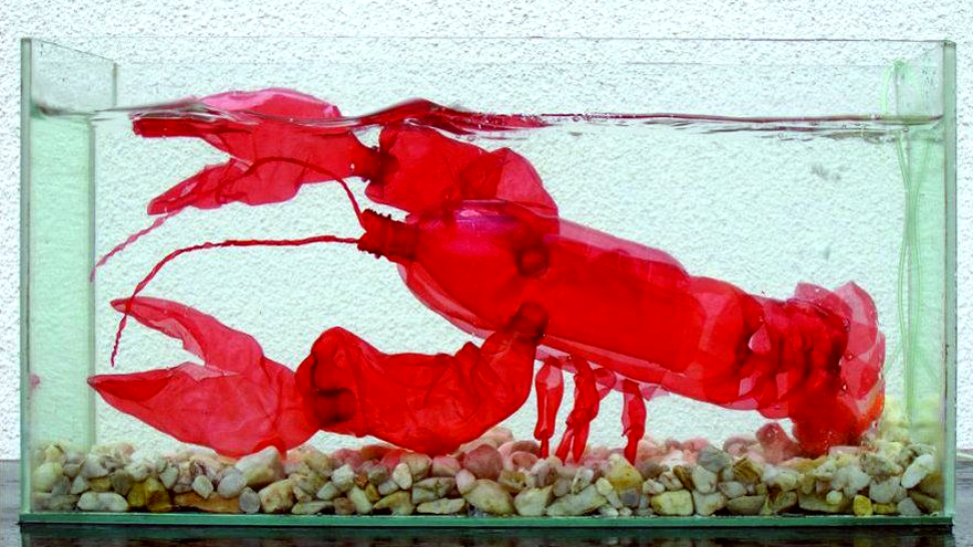 PET plastic bottle art