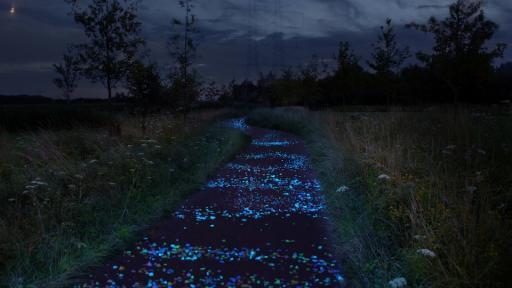 Van Gogh Bicycle Path by Daan Roosegaarde Van Gogh Bicycle Path by Daan