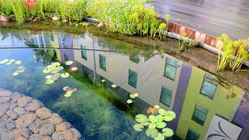 Cape Town's eco-friendly Hotel Verde
