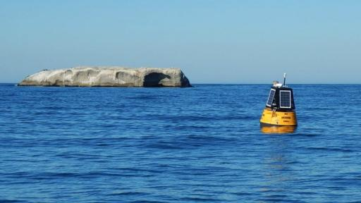 South African Dirk Muller designed a prototype buoy that could help scientists track the condition of the country's coastal waters