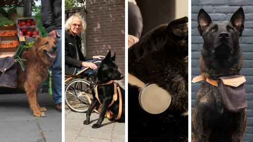 Design Academy Eindhoven student Archibald Godts considers the future of frail care where dogs become helpers to those too frail to care for themselves.