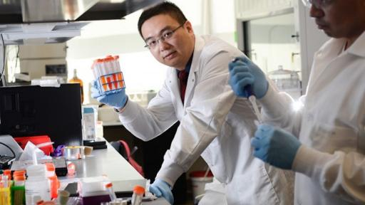 Zhen Gu: A painless patch could mean that millions of diabetes sufferers no longer have to inject themselves.