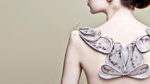 Biological Atelier: The Showroom