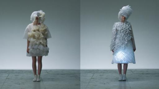 "The moving dresses ""can't"" ""won't"" by Ying Gao"