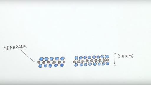 Nanoscientist Aleksandra Radenovic, explores the wonder of osmosis (also known as blue energy) power generation