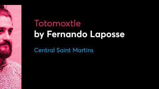 Antenna 2017 - Fernando Laposse