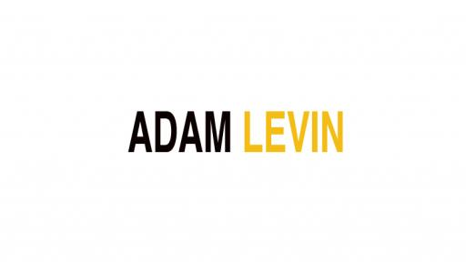 Adam Levin on South African fashion