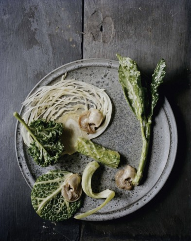 Winter cabbage and winter oysters. From Noma: Time and Place in Nordic Cuisine. Photo by Ditte Isager. Courtesy of Phaidon Press, www.phaidon.com