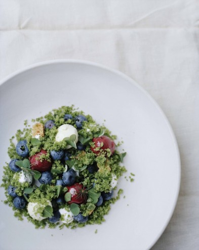 Blueberries surrounded by their natural environment. From Noma: Time and Place in Nordic Cuisine. Photo by Ditte Isager. Courtesy of Phaidon Press, www.phaidon.com