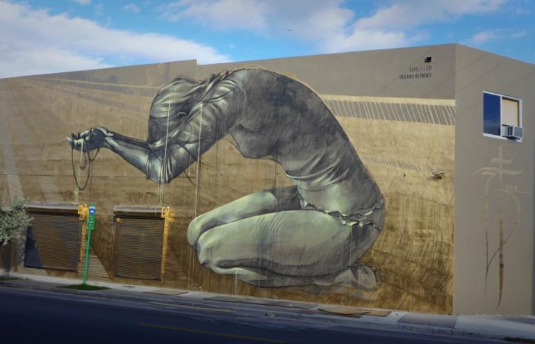 Multum in Parvo artwork by Faith47.