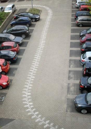 Spatial, Best Autonomous Spatial Design winner: Sand Carpets by Muurbloem.