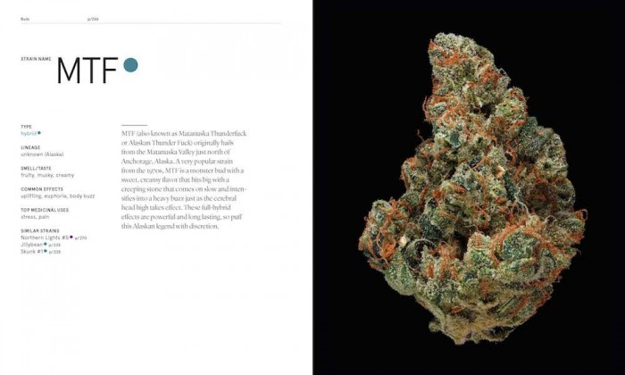 The book takes a scientific approach to marijuana