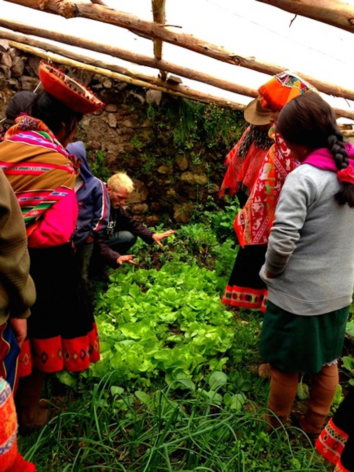 Andean Greenhouses