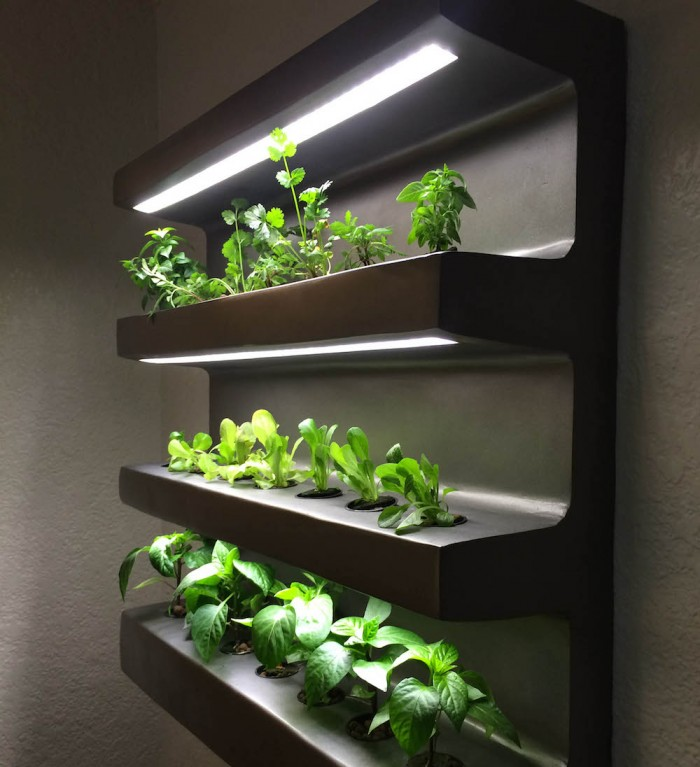 An App-assisted Home Vegetable Garden