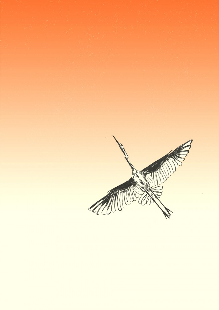 Ishaarah Arnold illustration of a flying crane bird.