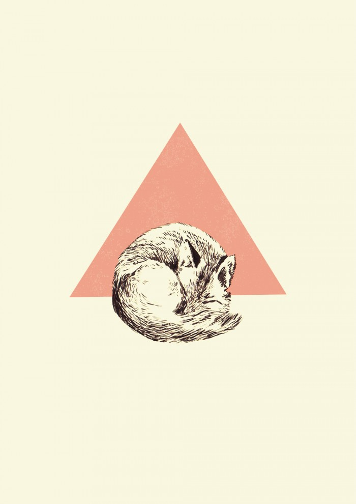 Ishaarah Arnold illustration of a curled up fox.