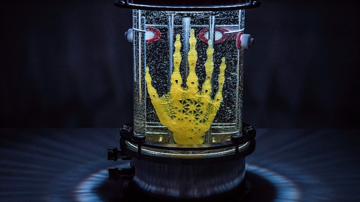 Artist Amy Karle's Regenerative Reliquary is an open-source biotech project showcasing a human hand grown out of stem cells