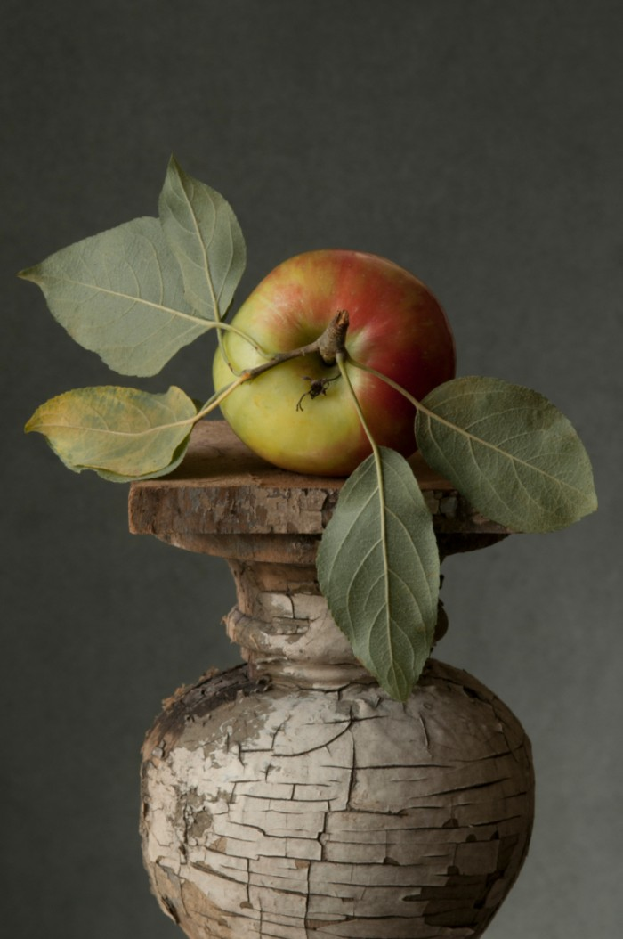 Lynn Karlin: Wild Apple