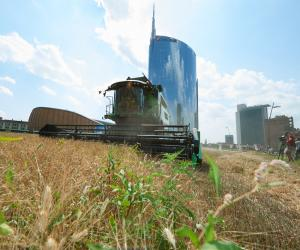 Wheatfield in Milan 2015 by Agnes Denes