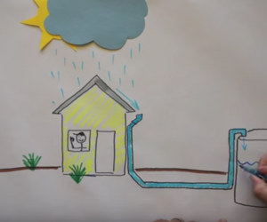 how rain water harvesting can be a game changer