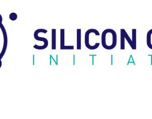 Silicon Cape Initiative