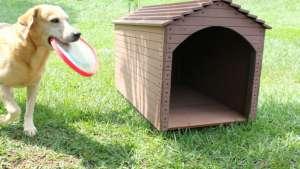 Image: www.diseclar.wordpress.com
