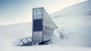 Svalbard Entrance