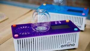 Amino Labs Inc