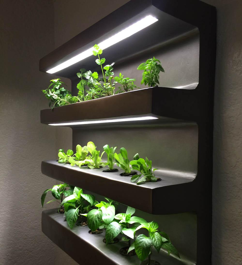 An app-assisted home vegetable garden | Design Indaba
