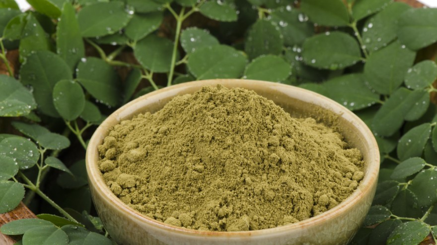 "Packed with nutritional and healing properties, several reports have named Moringa, a tree indigenous to Africa, ""the miracle tree"" and ""the tree of life""."