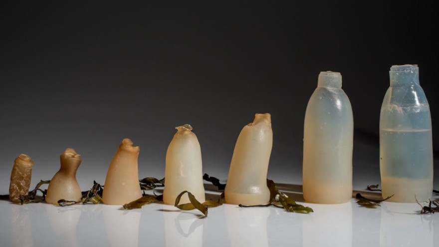 Biodegradable water bottle by Ari Jónsson