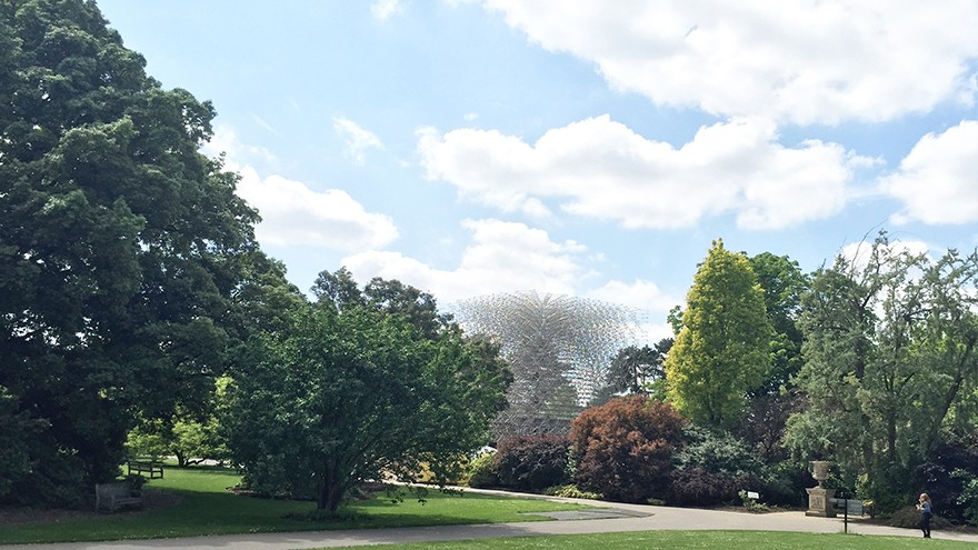 The Hive in the Royal Botanical Gardens, London